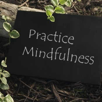 The words, Practice Mindfulness, on a chalkboard sitting next to tree root and plants.